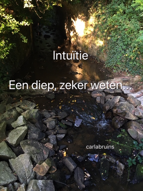 Intuïtie of emotie…?!