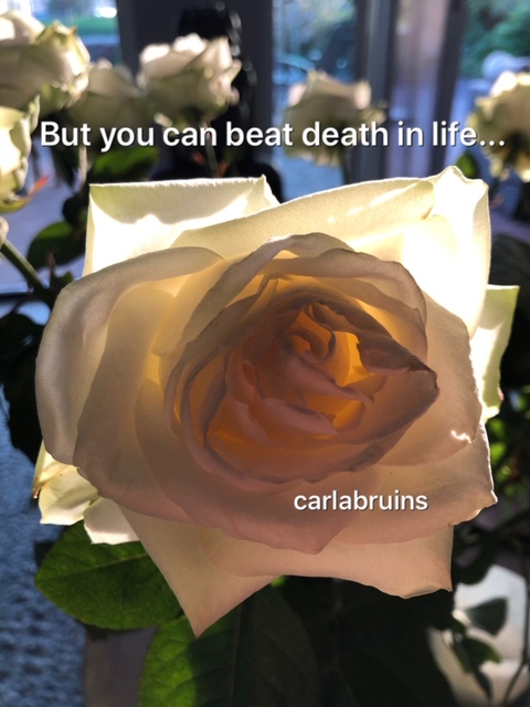 You cannot beat death …